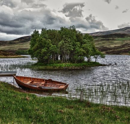 Image by Frank Winkler from Pixabay
