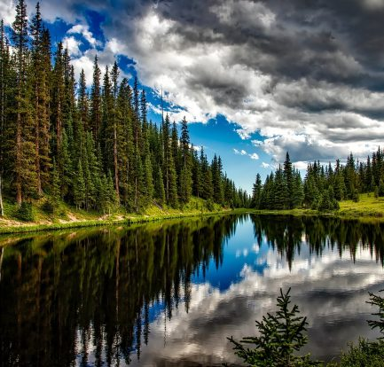 Image by David Mark from Pixabay