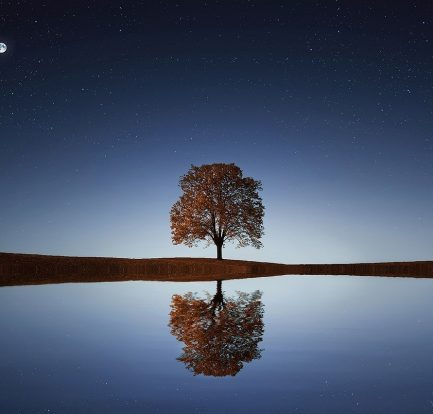 Image by Bessi from Pixabay